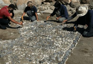 mosaico hitita